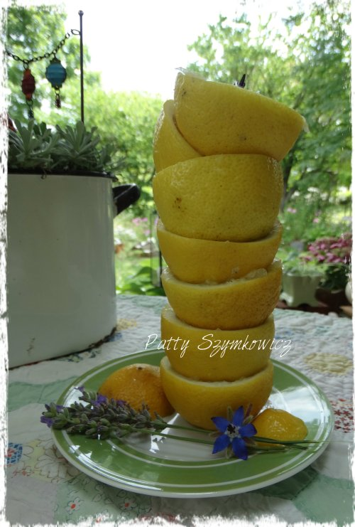 Magpie's Nest Lemon Stack