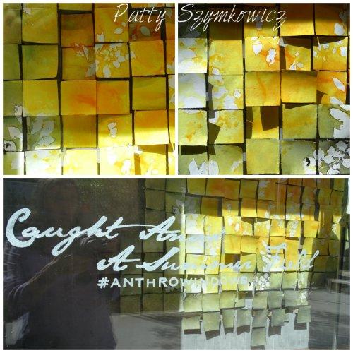 Magpie's Nest Mosaic District Anthro Window