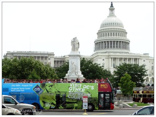 Magpie's Nest Wash DC buses (1)