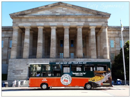 Magpie's Nest Wash DC buses