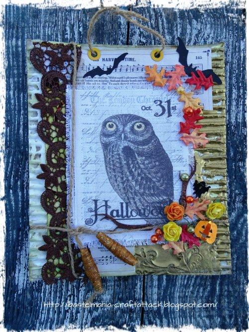 DSC02789 Owl