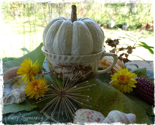 Magpie's Nest cup of pumpkin