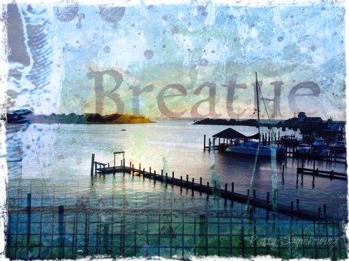 Magpie's Nest Silver Lake BREATHE