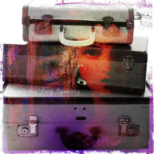 Magpie's Nest suitcases and my artwork