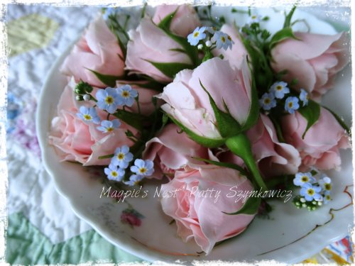 June roses and forget-me-nots