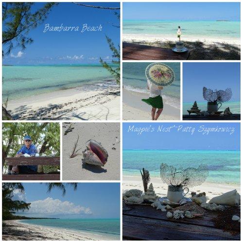 Bambarra Beach Middle Caicos Island