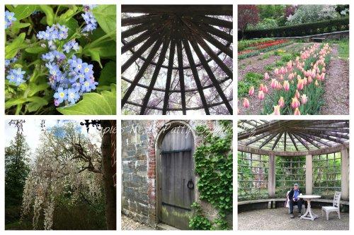 Magpie's Nest Dumbarton Oaks garden