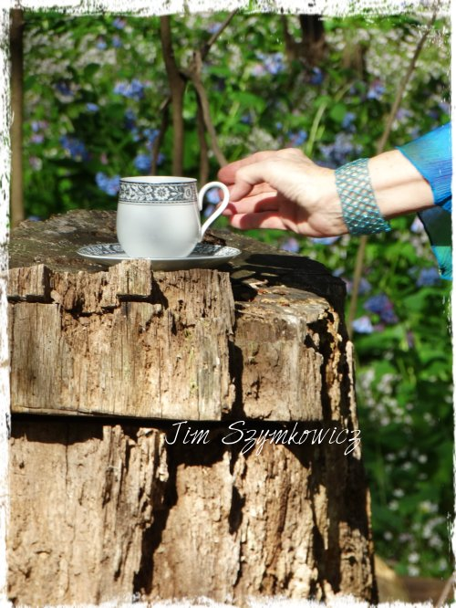 Magpie's Nest Traveling Tea Cup on a stump