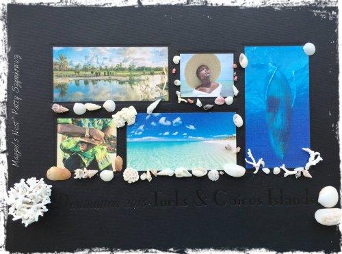 TCI Album w shells