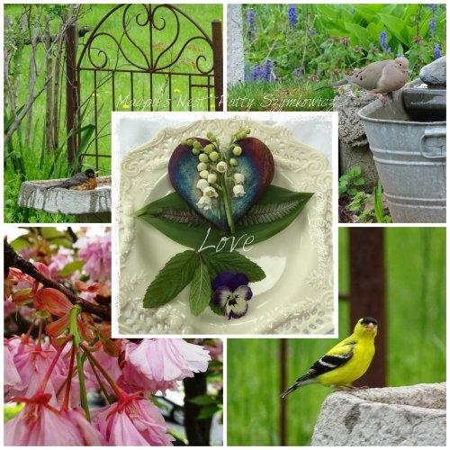 Magpie's Nest garden visitors