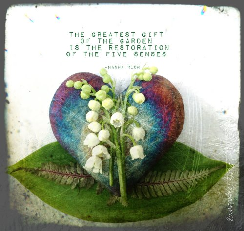 Magpie's Nest greatest figt of the garden quote
