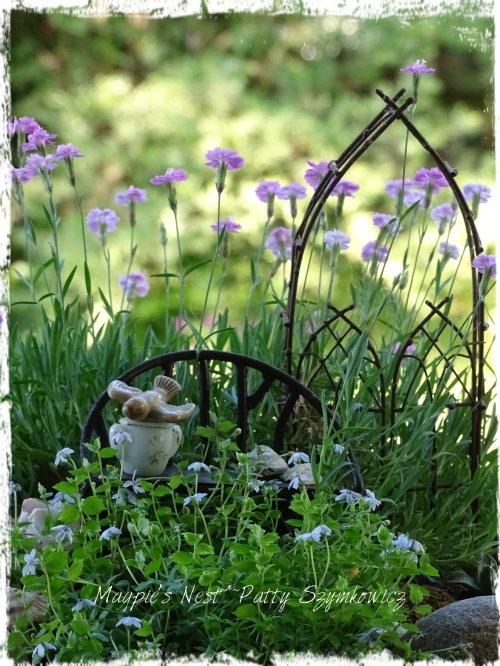 Patty Szymkowicz fairy garden closeup