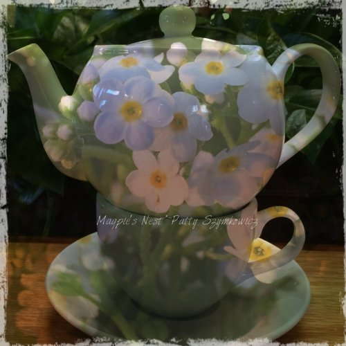 Patty Szymkowicz Forget-me-not T Pot