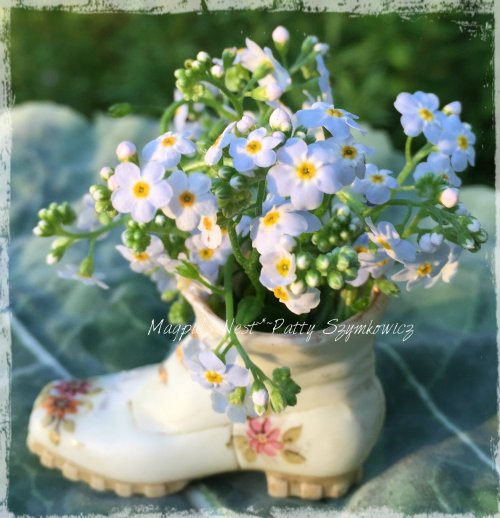 Patty Szymkowicz Tiny boot Forget me nots