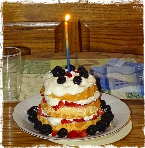 Magpie's Nest Angel Food Real Whipped Cream and Berries