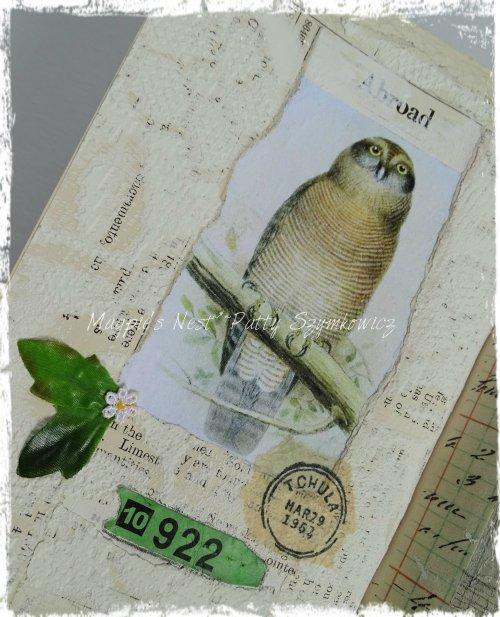 Magpie's Nest Patty Szymkowicz Polska Owl Pages (1)