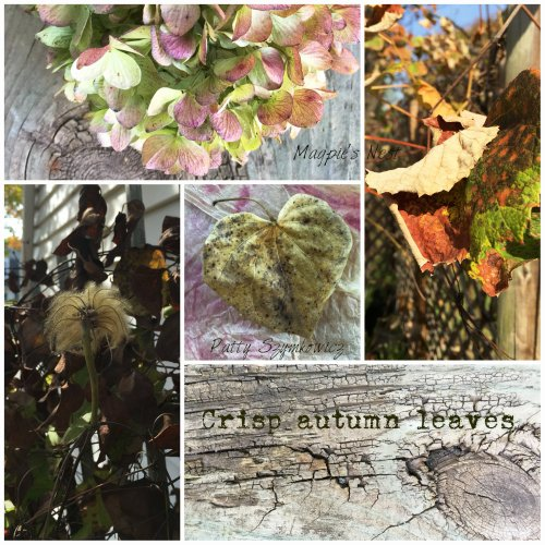 Magpie's Nest Autumn leaves collage