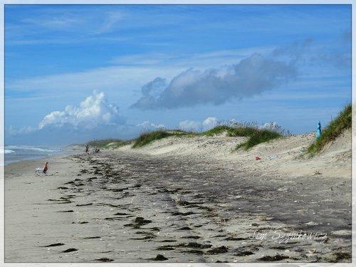 Magpie's Nest Jim Szymkowicz Ocracoke Island Beach