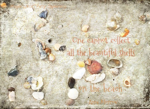 Magpie's Nest Patty Szymkowicz shells and quote