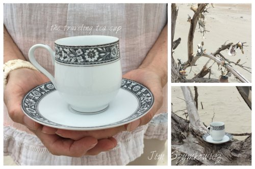 Magpie's Nest Patty Szymkowicz Traveling T Cup