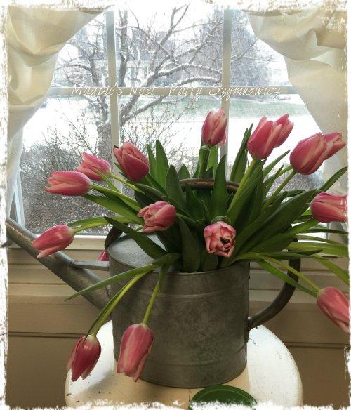 Magpie's Nest Patty Szymkowicz Blizzard Tulips