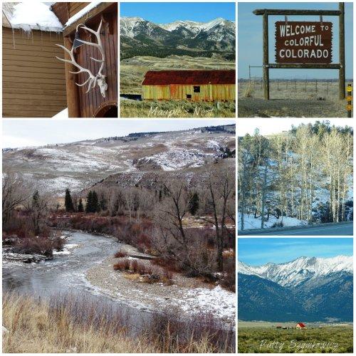 Magpie's Nest Patty Szymkowicz Colorado