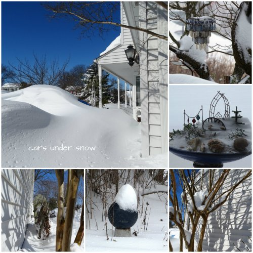 Magpie's Nest Patty Szymkowicz Snow on Snow