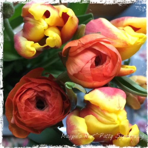 Magpie's Nest Patty Szymkowicz Trader Joe's Tulips and Ranunculus