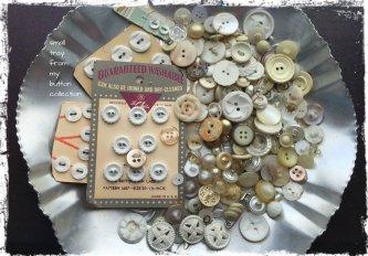 Magpie's Nest Patty Szymkowicz White Buttons