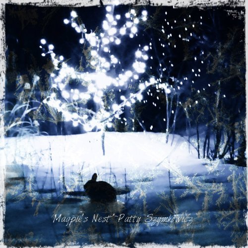 Magpie's Nest Patty Szymkowicz midnight visitor Diana app layers