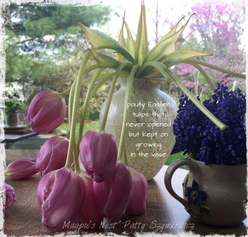 Magpie's Nest Patty Szymkowicz Easter tulips