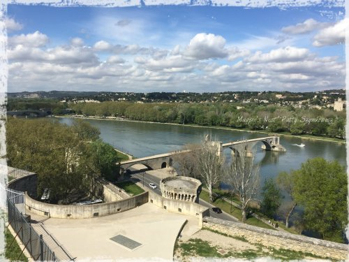 Magpie's Nest Avignon Bridge