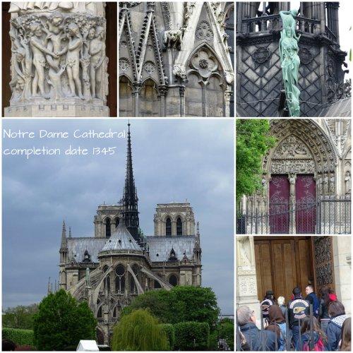 Magpie's Nest Patty Szymkowicz Notre Dame