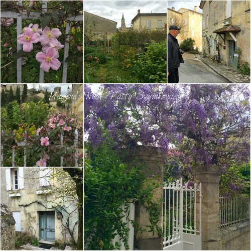 Magpie's Nest Patty Szymkowicz Saint Emilion garden and wisteria