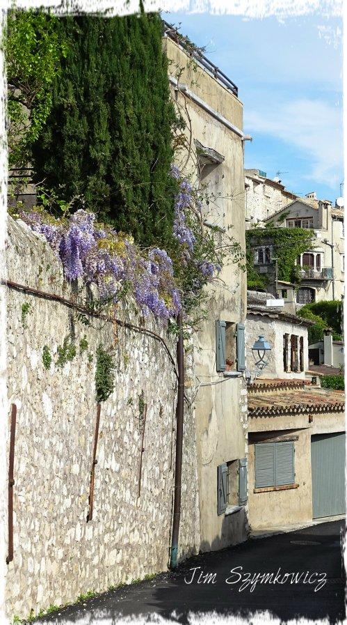 Magpie's Nest Wisteria St Paul de Vence