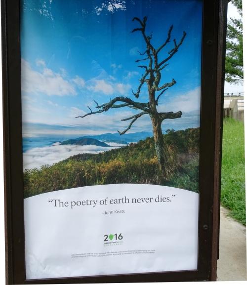 DSC04723 Keats quote