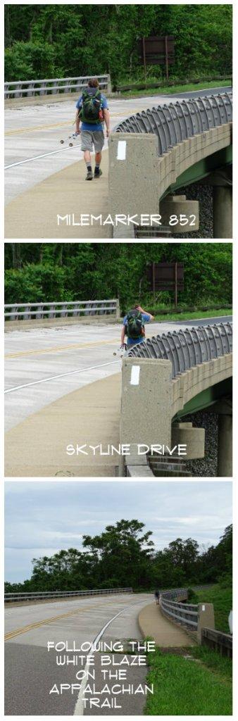 Magpie's Nest Deuces Skyline Drive