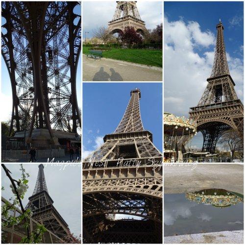 Magpie's Nest Patty Szymkowicz La Tour Eiffel