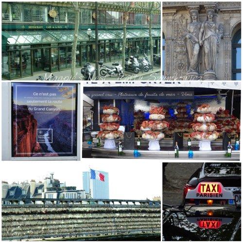 Magpie's Nest Patty Szymkowicz Paris Impressions
