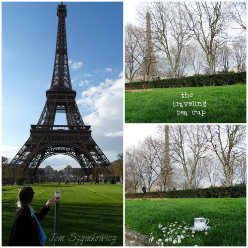 Magpie's Nest Patty Szymkowicz Traveling T Cup at La Tour Eiffel