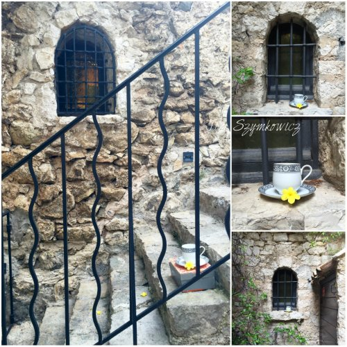 Magpie's Nest Patty Szymkowicz Traveling Tea Cup in Eze