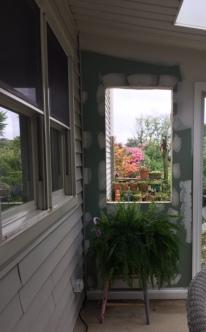 Magpie's Nest window in