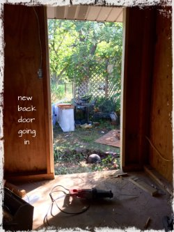 Magpie's Nest new back door