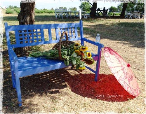 Magpie's Nest Patty Szymkowicz Parasol cut blooms water