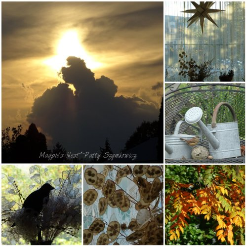 magpies-nest-autumn-days
